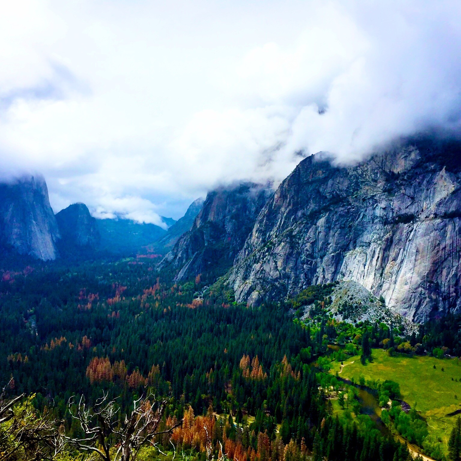 Travel Dietitian at Yosemite